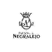 Palacio de Negralejo
